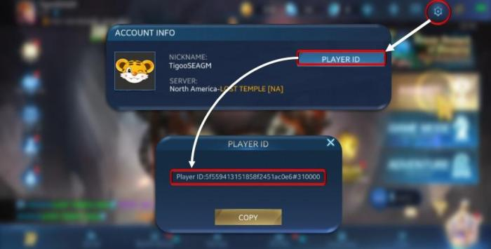 how to find heroes evolved player id